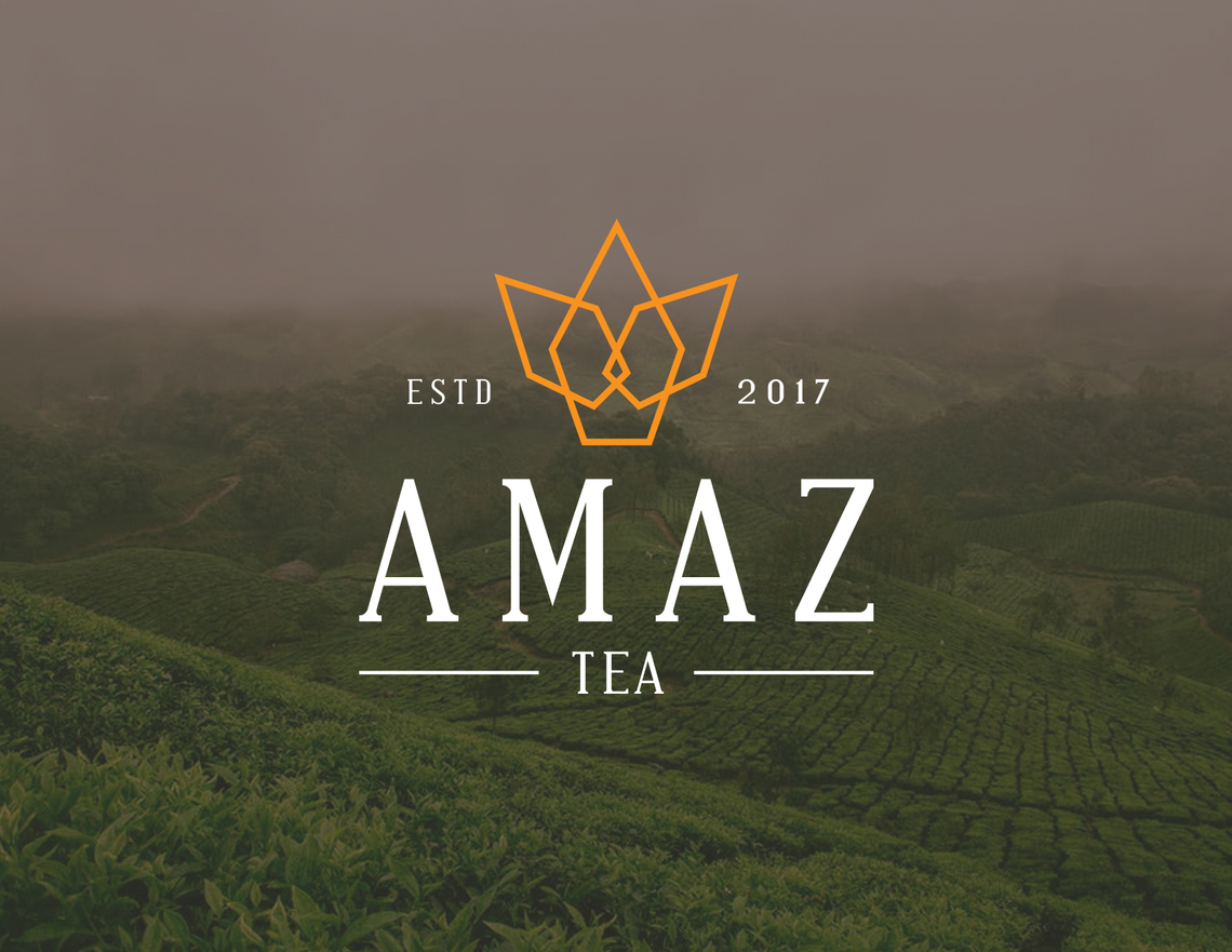Amaztea cover
